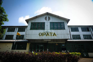 Opata Estate