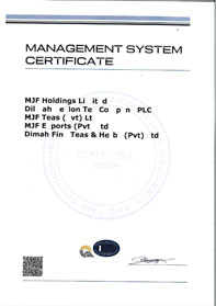 ISO 9001:2015 Quality Management System Standard